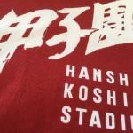 夏の甲子園、京都成章19年ぶり初戦突破ならず!