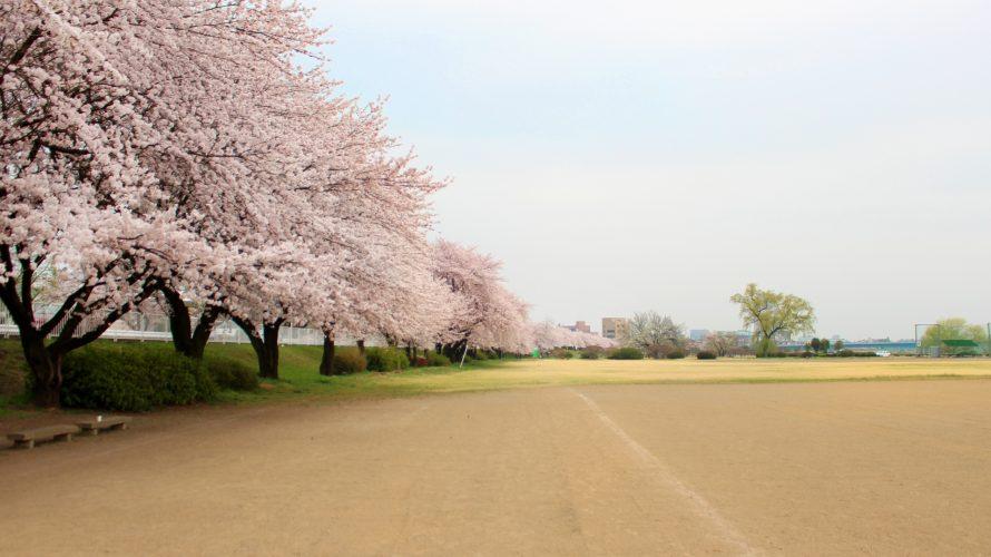 元横浜ベイスターズの染田賢作さん、西城陽高校の新監督に就任!